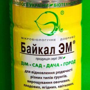 Байкал 1 л