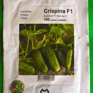 Криспина 100 семян