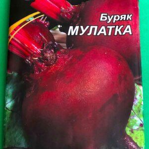 Буряк Мулатка